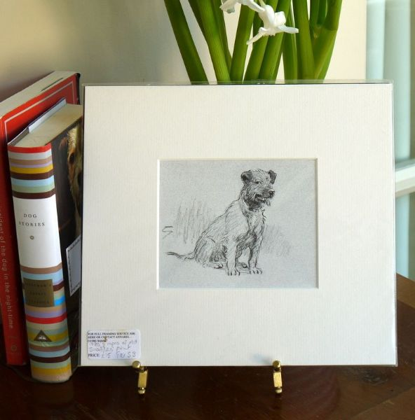 Pencil sketch of terrier sitting - Ter S3 - 1980's print by Snaffles